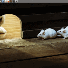 Best of Xfce 2014, featured