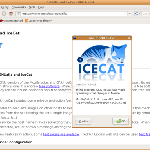 RMS recommends using a combination of IceCat and TOR to surf the web while at the same time protecting your privacy.